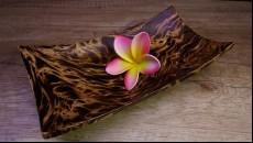podtácek z mangového dřeva