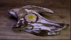 originální svícen z naplaveného teakového dřeva ležící na 1 čajovou svíčku