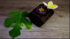 originální svícen z naplaveného teakového dřeva na 1 čajovou svíčku